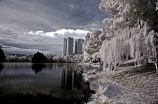 Infrared Photo- Lake, Building Stock Image
