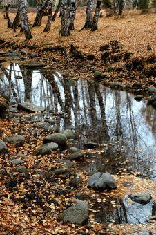 Free Deep Autumn Stock Image - 3606771