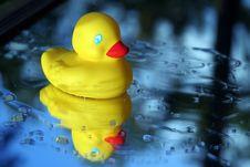 Free Rubber Ducky Stock Photos - 3606783