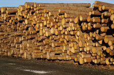 Free Timber Royalty Free Stock Photos - 3606848