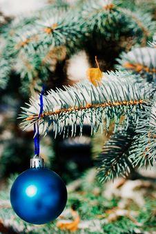 Free Christmas Ornament Stock Photos - 3607853
