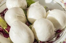 Free Mozzarella Stock Photography - 36012712