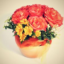 Free Flowers In A Pot Royalty Free Stock Image - 36018116