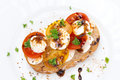 Free Piece Of Ciabatta With Mozzarella, Balsamic Sauce And Tomatoes Royalty Free Stock Photos - 36027318