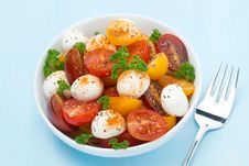 Free Bowl Of Salad With Mozzarella, Herbs And Colorful Cherry Tomato Stock Photography - 36027082
