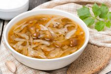 Free Traditional Russian Cabbage Soup &x28;shchi&x29; With Wild Mushrooms Royalty Free Stock Image - 36027486