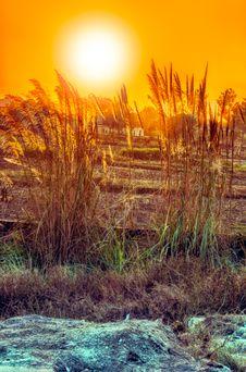 Free Urban Sunset Stock Photos - 36028313