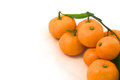 Free Tangerines With Leaves In The Lower Right Corner Stock Photo - 36033750
