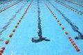 Free Swiming Pool Stock Photos - 36038663