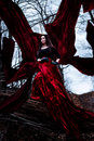 Free Mysterious Woman Or Witch In Long Red Dress Standing In Dark Forest With Flying Fabric Royalty Free Stock Images - 36039859