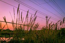 Free Urban Sunset Royalty Free Stock Photography - 36031157