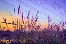 Free Urban Sunset Royalty Free Stock Image - 36033046