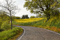 Free Turn Mountain Road In The Mountains Of Italy Royalty Free Stock Photo - 36046565