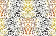 Free Pattern Background Tiger With Head Stock Photo - 36051250