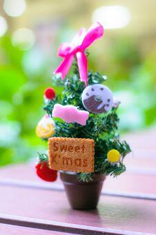 Free Small Christmas Tree Stock Photos - 36057193