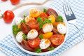 Free Salad With Mozzarella, Fresh Herbs And Colorful Cherry Tomatoes Stock Images - 36070984
