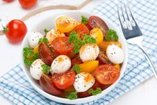 Salad With Mozzarella, Fresh Herbs And Colorful Cherry Tomatoes Stock Images