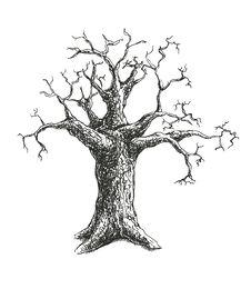 Free Tree Vector Illustration Design Royalty Free Stock Photos - 36071368
