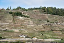 A View Of The Village From The Vine Terraces Royalty Free Stock Images
