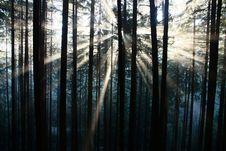 Free Sun Rays Stock Photo - 36090510