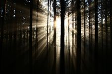 Free Sun Rays Stock Photo - 36090640