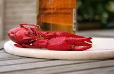 Free Lobster Stock Images - 3610094