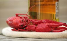 Free Lobster Royalty Free Stock Photo - 3610135