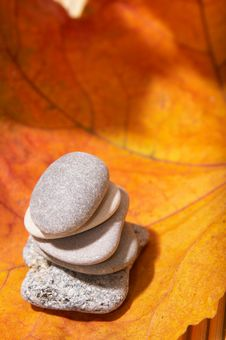 Free Autumn Leaves And Stones Stock Photography - 3612722