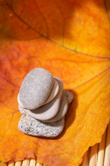 Free Autumn Leaves And Stones Stock Photos - 3612733