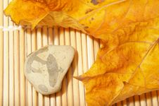 Free Autumn Leaf And Stone Stock Images - 3612744