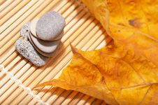 Free Autumn Leaves And Stones Stock Photography - 3612752
