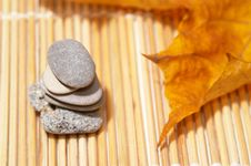 Free Autumn Leaves And Stones Royalty Free Stock Images - 3612759