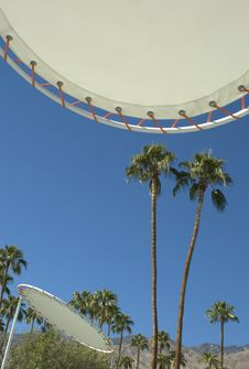 Retro Umbrellas At Palm Springs Resort Stock Photo