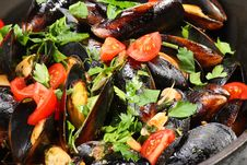 Mussel Stew (ragout) Royalty Free Stock Photos