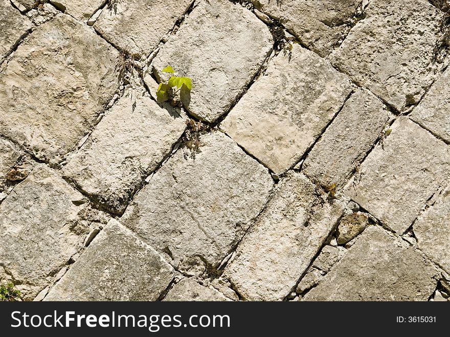 Castle Block Brick Walls