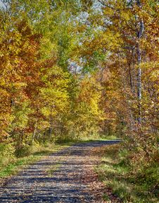 Free Autumn Landscape Royalty Free Stock Images - 36115179
