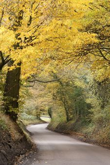 Hertfordshire Country Road Royalty Free Stock Image