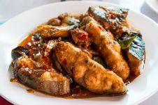 Free Thai Stir-fried Spicy Sheatfish Stock Photos - 36123153