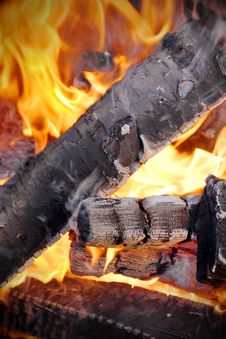 Birch Firewood In The Fire Of The Flame Royalty Free Stock Photos