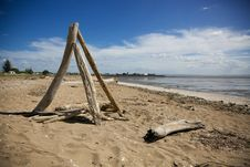 Free Drift Wood On The Beach. Royalty Free Stock Images - 36127839