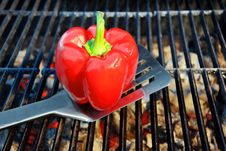 Spatula And Bell Pepper On The Hot BBQ Cast Iron Grill Stock Photography