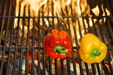 Colorful  Bell  Peppers And Hot Grill Stock Image