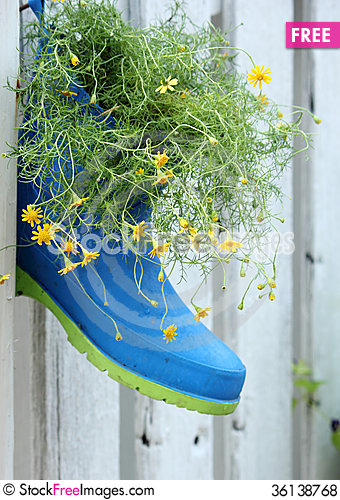 Free Flowers In Boots Royalty Free Stock Photos - 36138768