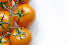 Free Tomatoes On White Royalty Free Stock Photography - 36130507