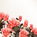 Free Background With  Pink Roses Stock Photo - 36148130