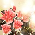 Free Beautiful  Background With Pink Detailed Roses Stock Images - 36148184