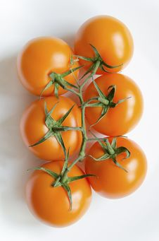 Free Tomatoes On White Stock Image - 36150901