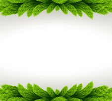 Free Christmas Frame With Fir Tree. Royalty Free Stock Photo - 36153585