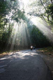 Free Phosphorescent Light Stock Photography - 36157562