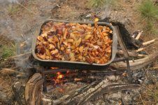 Free Fried Mushrooms. Stock Photography - 36160752